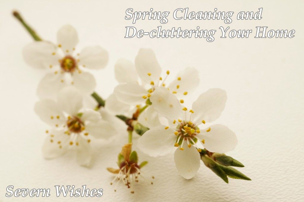 SpringCleaningSW